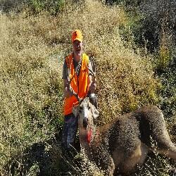 Wapiti Talk | Elk Hunting Forum | Elk Hunting Tips